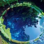 来週行く予定の柿田川公園の湧水池