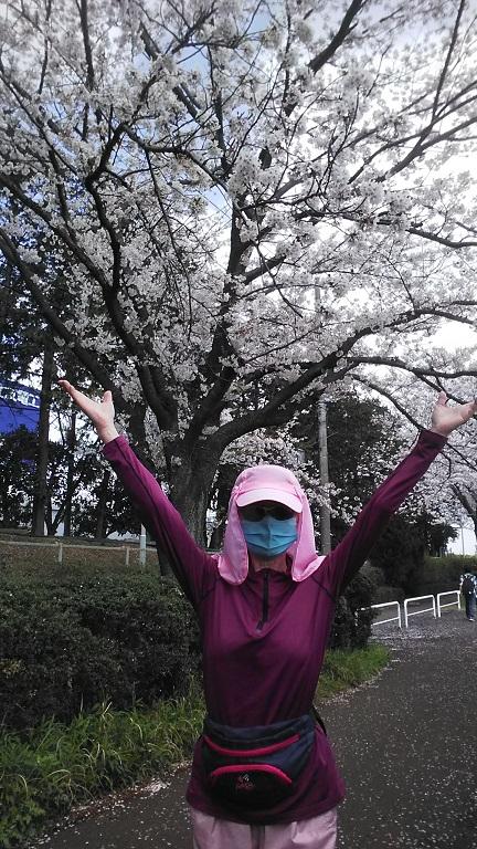 桜に「希望」を託す