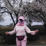 桜の下でも縄跳びダンス