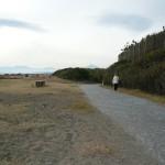 遠くに富士山が見えています