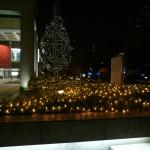 赤坂の町はもうクリスマスムード!今年はダレとイブを過ごせるかしら?
