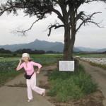 野辺山の名所の一つ「ヤマナシの木」