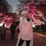 上野公園はイルミが始まった