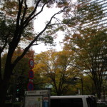 新宿副都心の紅葉
