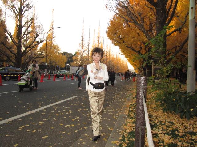♪~枯葉よ~