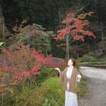 紅葉も美しい!