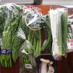 緑緑緑の野菜たち