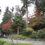 円覚寺山門周辺