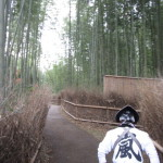 人力車専用の竹林