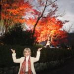 天龍寺の紅葉ライトアップ
