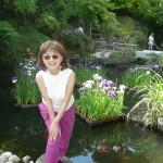 長谷寺は花菖蒲もきれいです